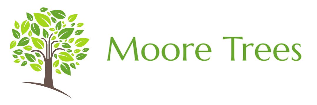 Moore Trees